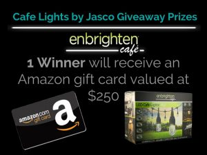 giveaway--jas-cafe-lights-fall-