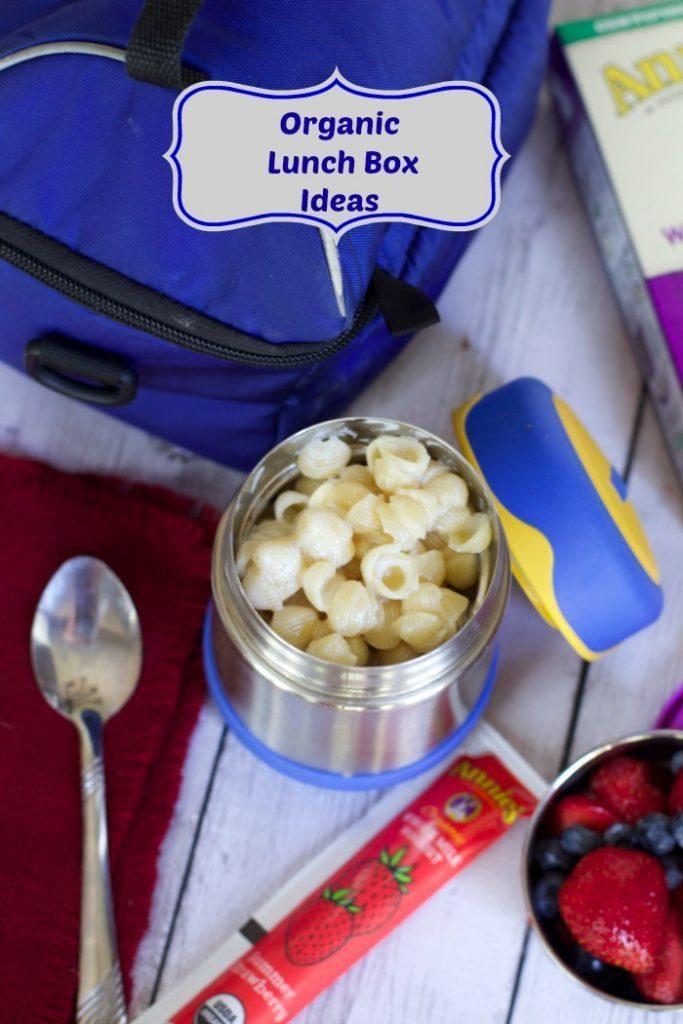 organic Lunch Box ideas