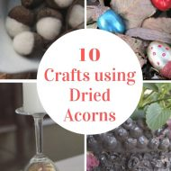 How to Use Dried Acorns For Fall Decor and Fall Crafts
