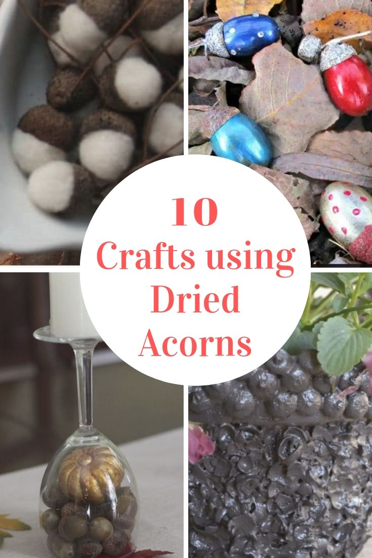 Crafts using dried acorns