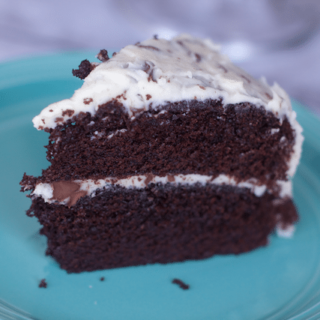 Moist Chocolate Cake with Chocolate Chip Frosting