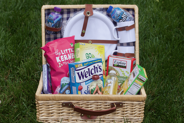 Kid Friendly Picnic Basket Essentials for A Picnic With Kids