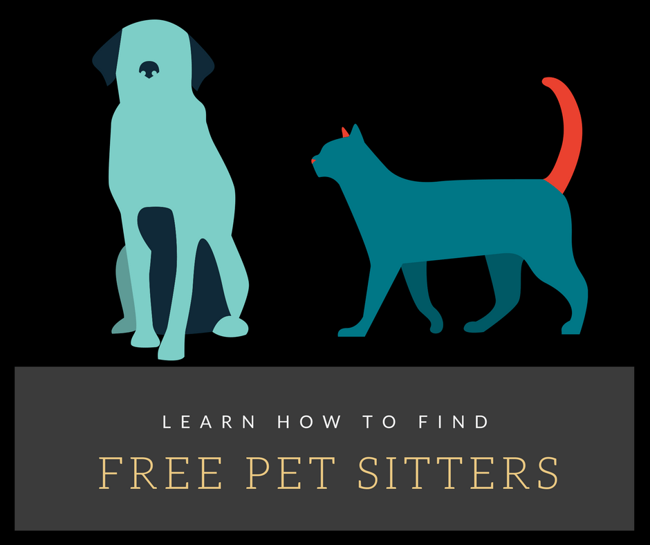 How to Find A Good Pet Sitter For Free or Find Ways To Travel For Free