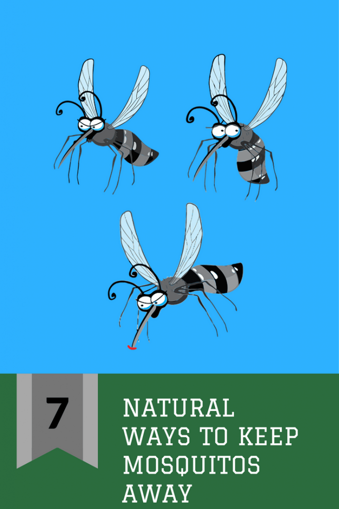 Seven Natural Ways to Keep Mosquitos Away