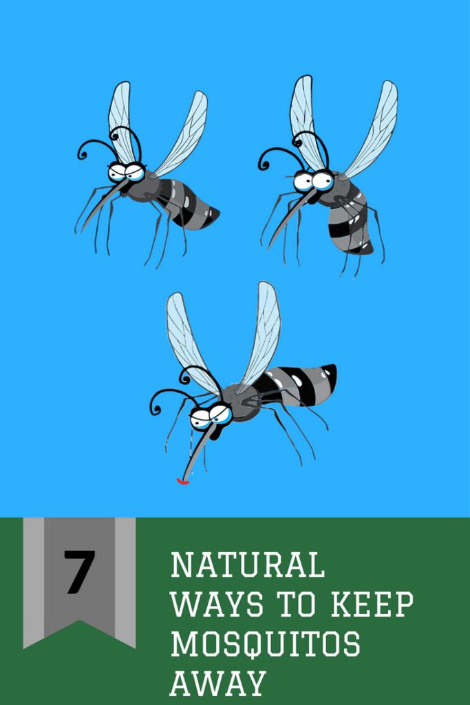 Seven Natural Ways to Keep Mosquitos Away