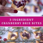 3 Ingredient Cranberry Brie Bites Recipe for A Crowd