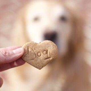 Best 4 Ingredient DIY Peanut Butter Dog Treats