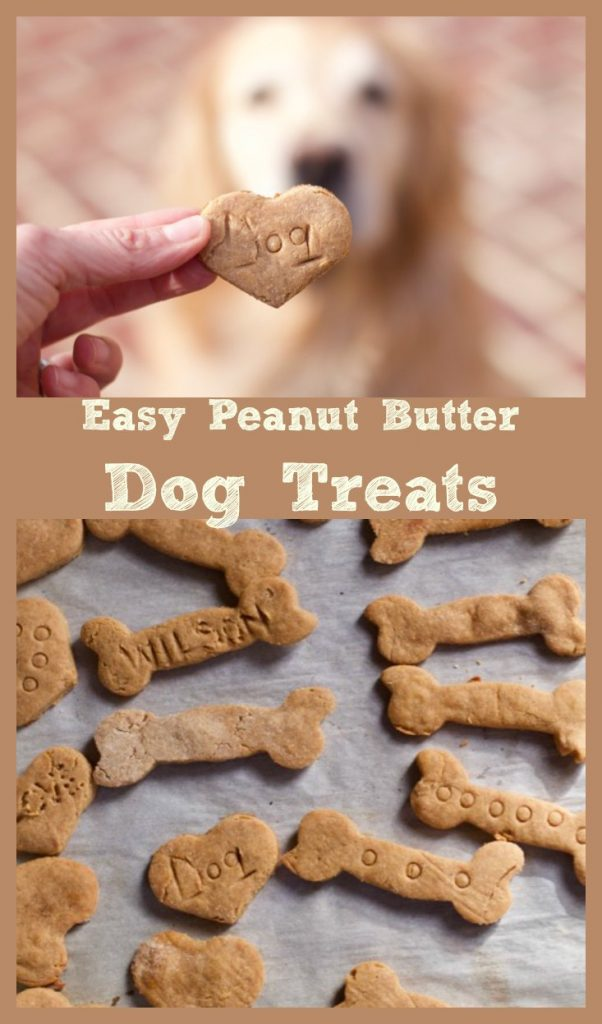 Best 4 Ingredient DIY Peanut Butter Dog Treats