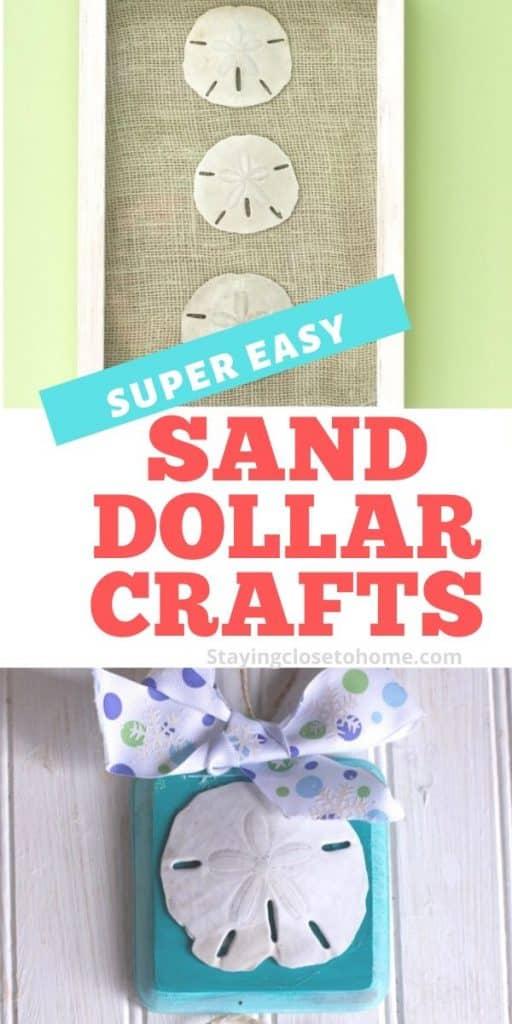 sand dollar crafts