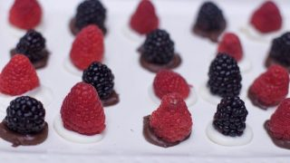 Easy No Bake Desserts: Chocolate Berry Bites