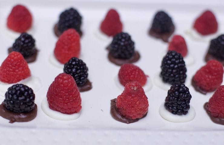 Last Minute Dessert Idea: Chocolate Berry Bites