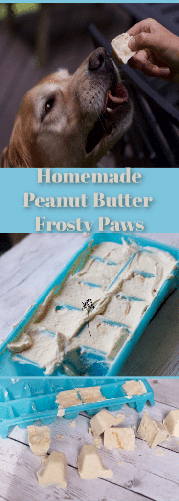 Homemade peanut butter frosty paws Recipe