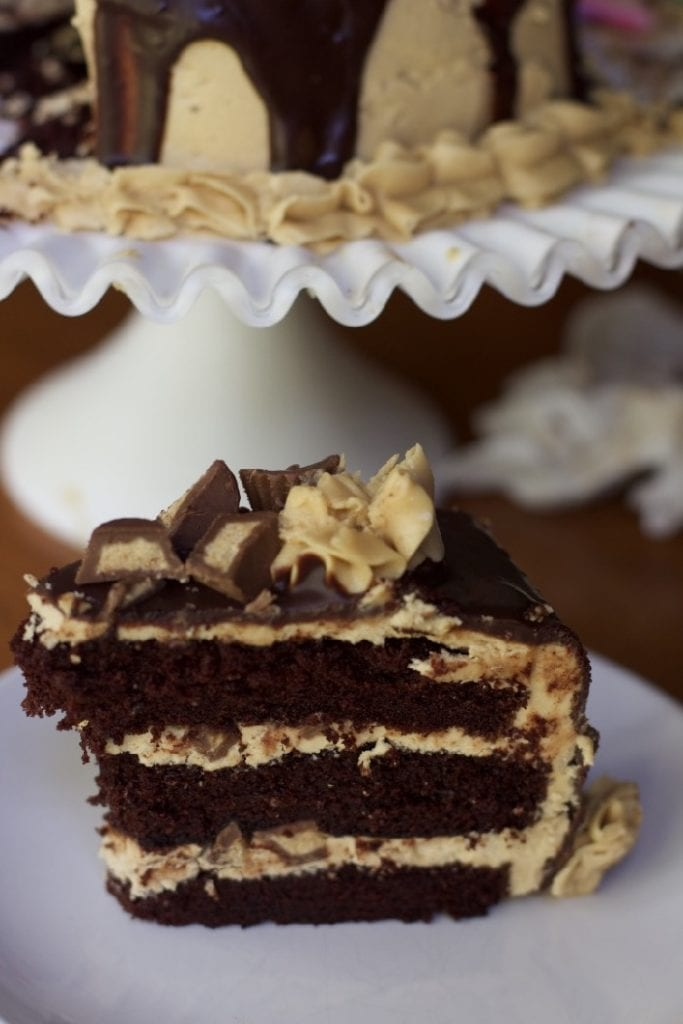 Peanut butter Chocolate Cake Recipe Reeses peanut butter cup cake 1