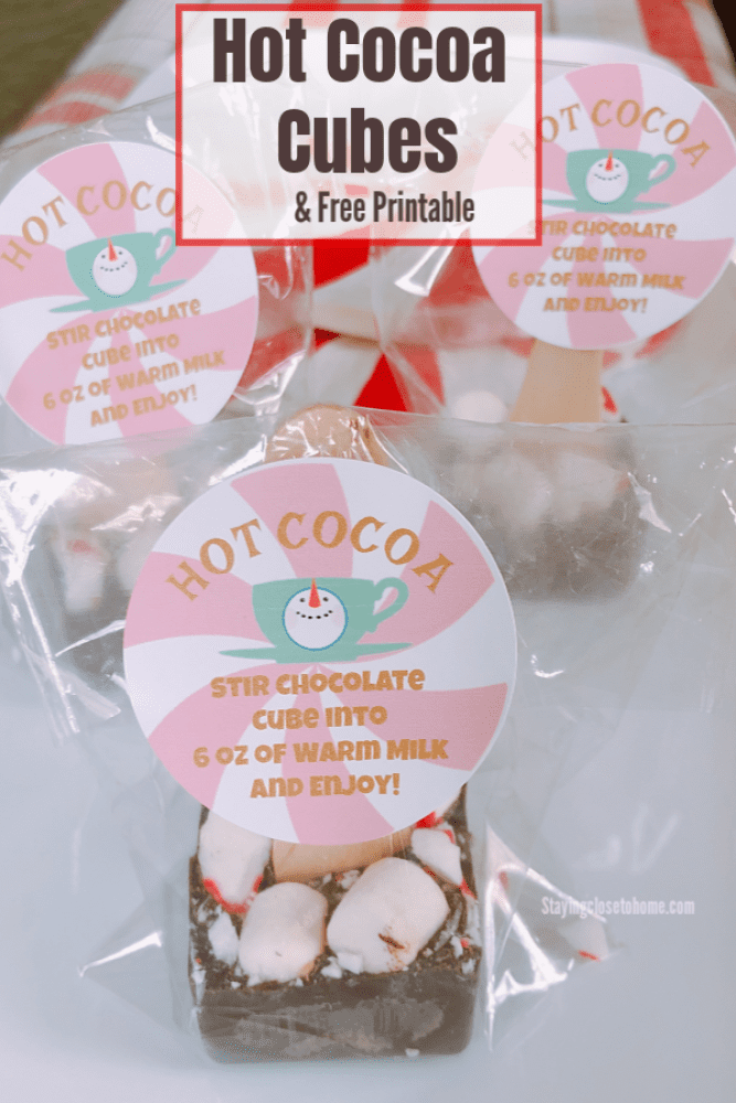 Hot Cocoa Cubes, Hot Cocoa on a Stick Holiday party favors