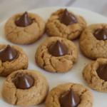 peanut butter cookies with Peanut Powder PB2 Recipes