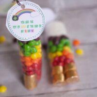 Skittles Rainbow St Patricks Day Treat Bags