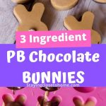 3 ingredient peanut butter chocolate candy