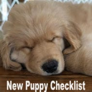 New Puppy Checklist
