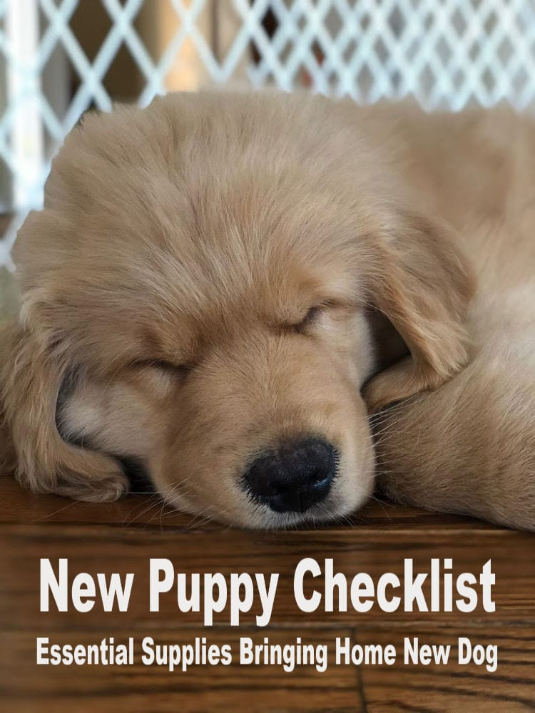 New Puppy Checklist (Essential Supplies Bringing Home New Dog)