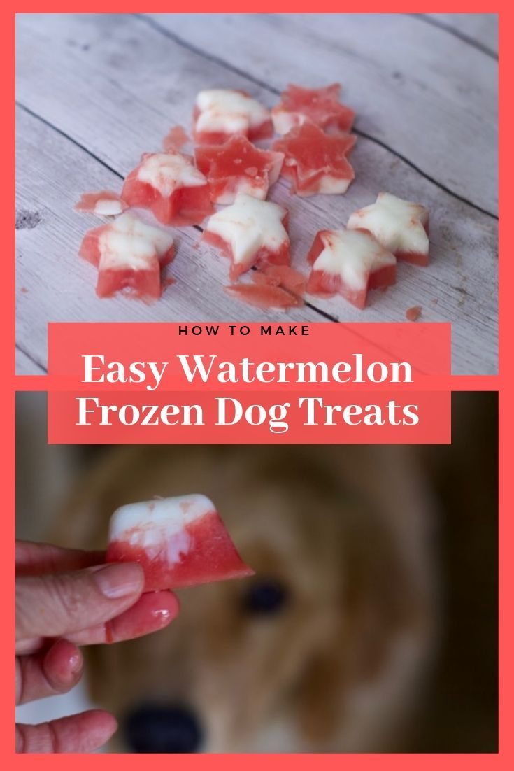 Yogurt and Watermelon Frozen Dog Treats are perfect for dog days of summer. Make watermelon frosty paws for the pups in your life.