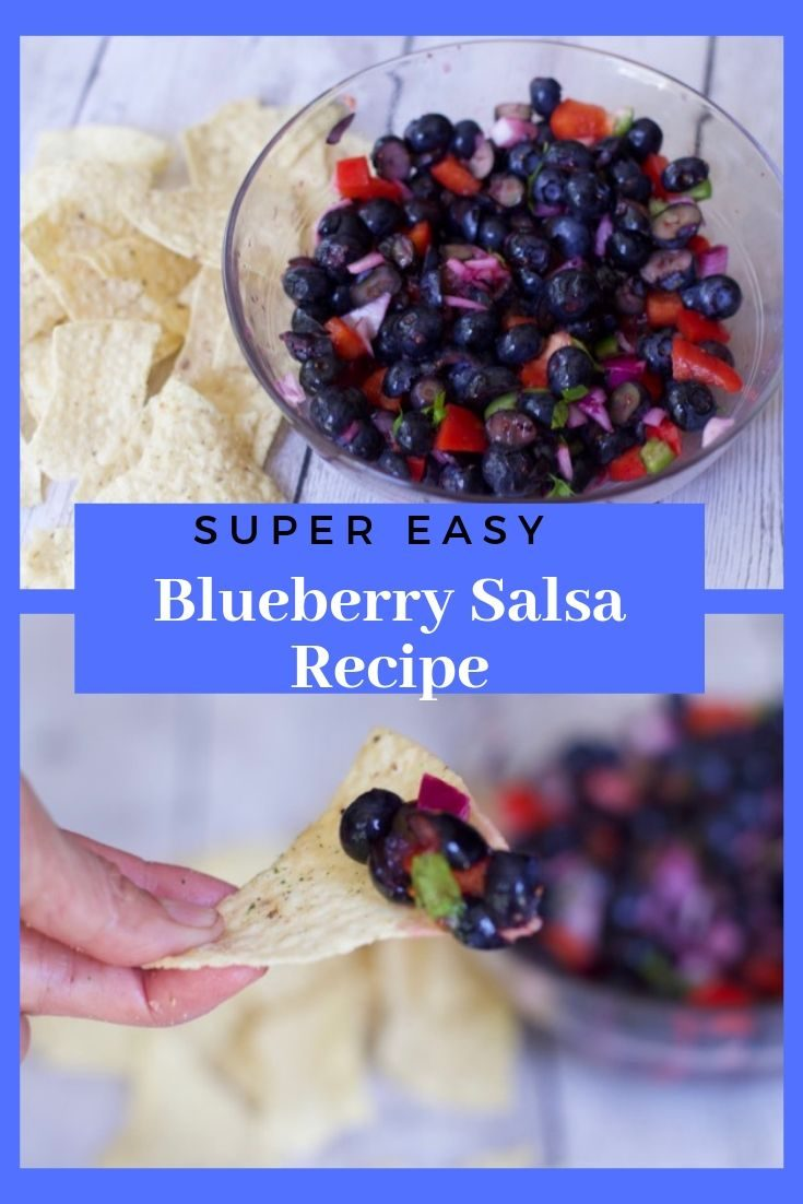 Looking for a Fresh Fruit Salsa  recipe: then you need to try this Blueberry Salsa recipe with your bounty of fresh blueberries #salsa #blueberry