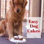 dogs cake recipe birthday
