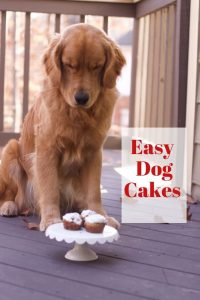 dogs cake recipe birthday