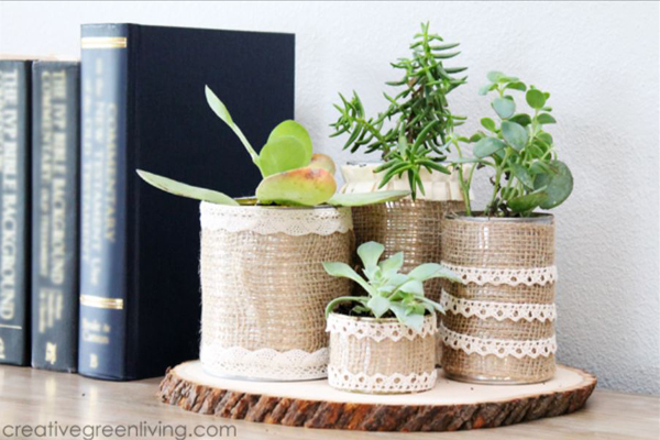 Make Recycled Succulent Planters