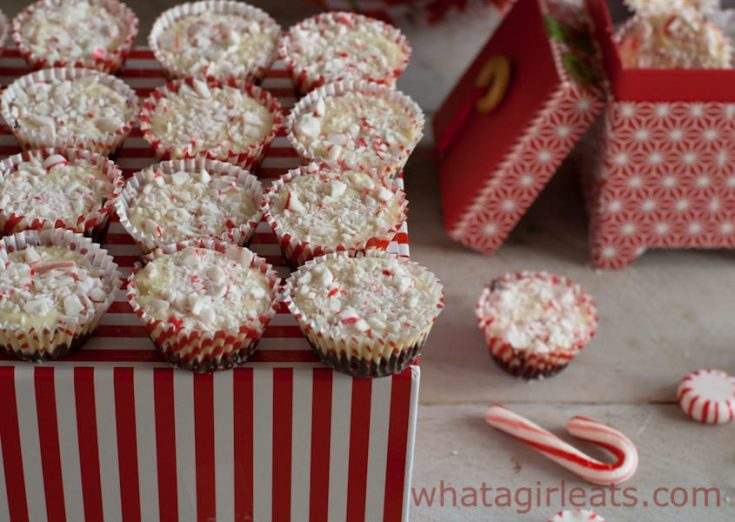 Peppermint Bark Cups