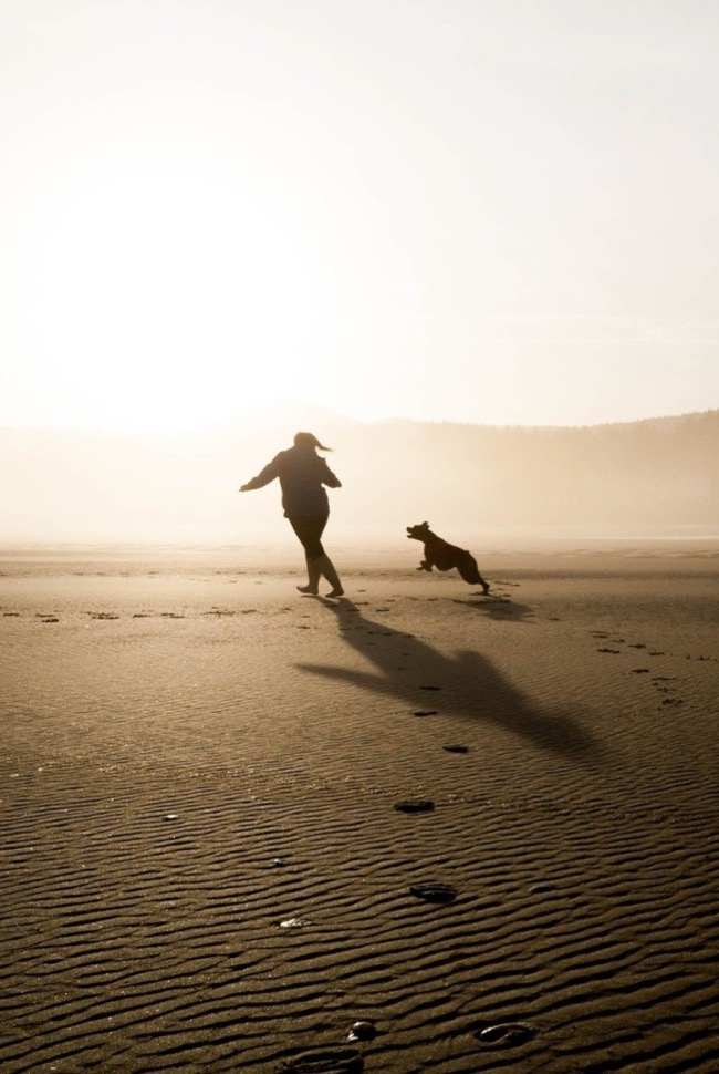 5 tips to run with a dog