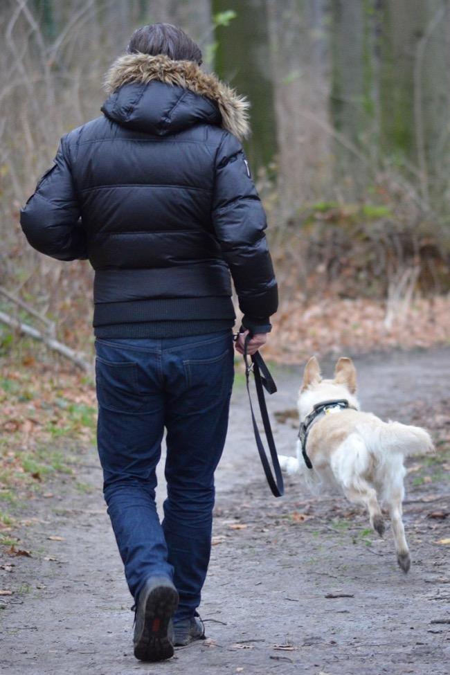 run with a dog leash