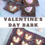 valentines Day bark