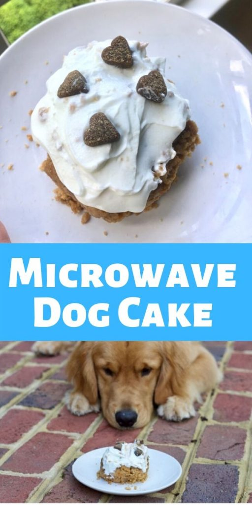 microwave dog cake with carrots
