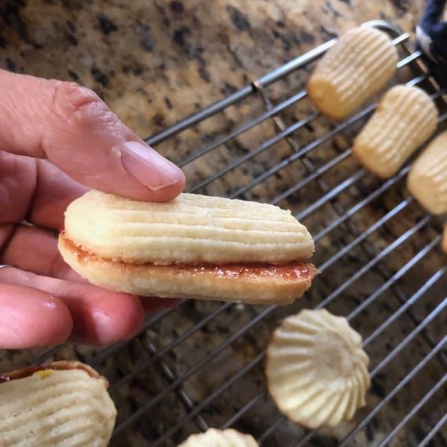 sandwich italian cookies